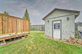 Photo 30: 161 Douglas Ridge Circle SE in Calgary: Douglasdale/Glen Detached for sale : MLS®# A1137353