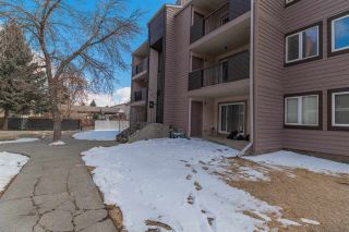 Photo 20: 202 51 Akins Drive: St. Albert Condo for sale : MLS®# E4232818