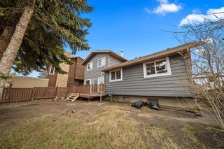 Photo 38: 63 Whiteram Court NE in Calgary: Whitehorn Detached for sale : MLS®# A1107725