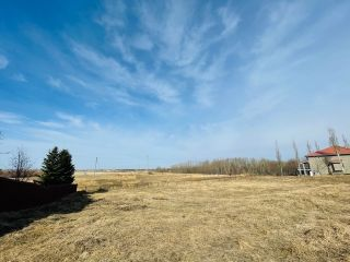 Photo 8: 738 52304 RGE RD 233: Rural Strathcona County Rural Land/Vacant Lot for sale : MLS®# E4236967