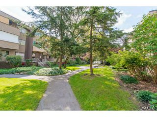 Photo 15: 21 2441 KELLY Avenue in Port Coquitlam: Central Pt Coquitlam Condo for sale : MLS®# V1120570