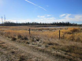Photo 9: NE 13-54 Range Road 130: Niton Junction Rural Land for sale (Edson)  : MLS®# 32591