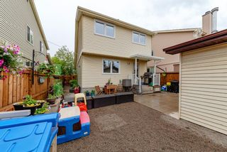 Photo 19: 123 Erin Woods Drive SE in Calgary: Erin Woods Detached for sale : MLS®# A1117498
