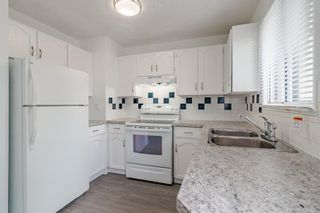 Photo 19: 10 75 TEMPLEMONT Way NE in Calgary: Temple Row/Townhouse for sale : MLS®# A1111263