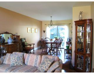 """Photo 5: 4288 WINDSOR Street in Vancouver: Fraser VE House for sale in """"FRASER"""" (Vancouver East)  : MLS®# V788976"""