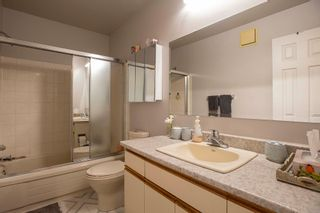 Photo 14: 567 Templeton Avenue in Winnipeg: Residential for sale (4F)  : MLS®# 202014719