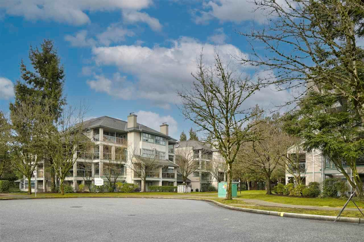 """Main Photo: PH8A 7025 STRIDE Avenue in Burnaby: Edmonds BE Condo for sale in """"Somerset Hill"""" (Burnaby East)  : MLS®# R2591412"""
