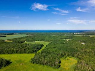 Photo 48: 275035 HWY 616: Rural Wetaskiwin County House for sale : MLS®# E4252163