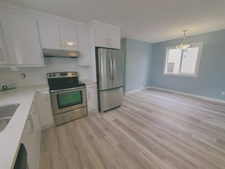 Photo 16: 23 Erin Meadows Court SE in Calgary: Erin Woods Detached for sale : MLS®# A1124454
