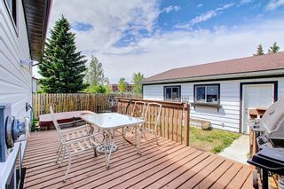 Photo 26: 159 Falton Way NE in Calgary: Falconridge Detached for sale : MLS®# A1113632