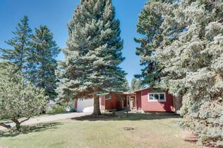 Main Photo: 79 Calandar Road NW in Calgary: Collingwood Detached for sale : MLS®# A1118086