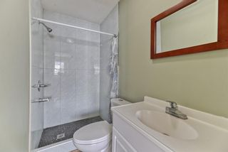 Photo 14: 262 Martinwood Place NE in Calgary: Martindale Detached for sale : MLS®# A1123392