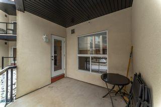 Photo 18: 119 10523 123 Street in Edmonton: Zone 07 Condo for sale : MLS®# E4241031