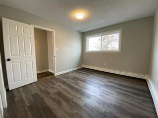 Photo 18: 425 Big Springs Drive SE: Airdrie Detached for sale : MLS®# A1087684