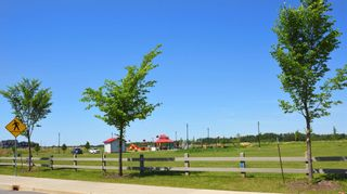 Photo 41: 404 1004 ROSENTHAL Boulevard in Edmonton: Zone 58 Condo for sale : MLS®# E4250933