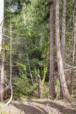 Photo 16: 3614 Jolly Roger Cres in : GI Pender Island Land for sale (Gulf Islands)  : MLS®# 869738