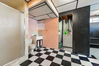 Photo 26: 10220 166 Avenue in Edmonton: Zone 27 House for sale : MLS®# E4252052