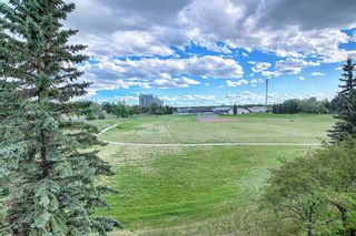 Photo 35: 303 495 78 Avenue SW in Calgary: Kingsland Apartment for sale : MLS®# A1120349