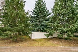 Photo 41: 3054 108 Street in Edmonton: Zone 16 Townhouse for sale : MLS®# E4228710