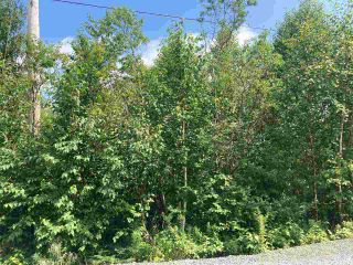 Photo 8: Lot 7 Highway 7 in Goldenville: 303-Guysborough County Vacant Land for sale (Highland Region)  : MLS®# 202015433