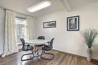 Photo 9: 108 Fallswater Road NE in Calgary: Falconridge Detached for sale : MLS®# A1133695