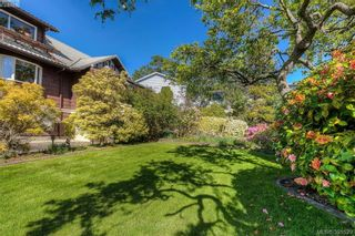 Photo 4: 517 Comerford St in VICTORIA: Es Saxe Point House for sale (Esquimalt)  : MLS®# 786962