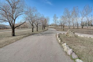 Photo 6: 116 Pine Creek Road: Rural Foothills County Detached for sale : MLS®# A1091741