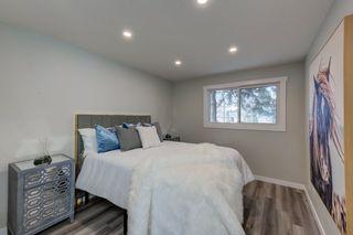 Photo 29: 8915 142 Street in Edmonton: Zone 10 House for sale : MLS®# E4236047