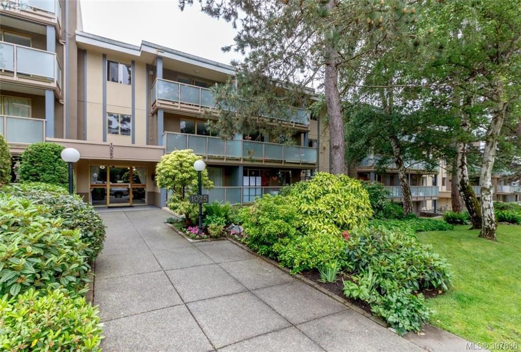 Main Photo: 327 1025 Inverness Rd in VICTORIA: SE Quadra Condo for sale (Saanich East)  : MLS®# 795865