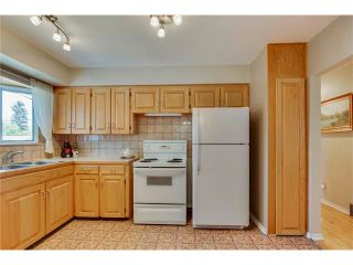 Photo 11: 129 FAIRVIEW Crescent SE in Calgary: Fairview House for sale : MLS®# C4062150