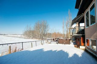 Photo 44: 39 Sheep River Heights: Okotoks Detached for sale : MLS®# A1067343