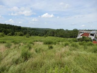 Photo 15: 299 New Lairg Road in New Lairg: 108-Rural Pictou County Vacant Land for sale (Northern Region)  : MLS®# 202117815