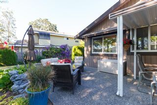 Photo 16: 12 4056 N Livingstone Ave in VICTORIA: SE Mt Doug Row/Townhouse for sale (Saanich East)  : MLS®# 766389