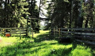Photo 7: 6124 Township Road 314: Rural Mountain View County Detached for sale : MLS®# A1102303