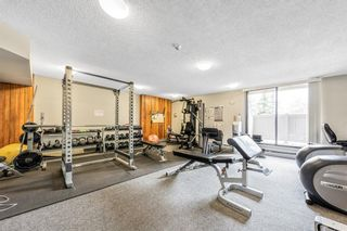 Photo 19: 604 30 Mchugh Court NE in Calgary: Mayland Heights Apartment for sale : MLS®# A1152628