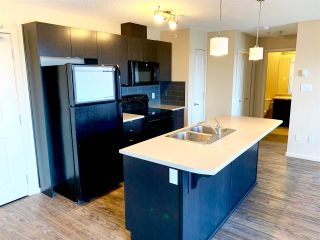 Photo 4: 417 508 ALBANY Way in Edmonton: Zone 27 Condo for sale : MLS®# E4229451
