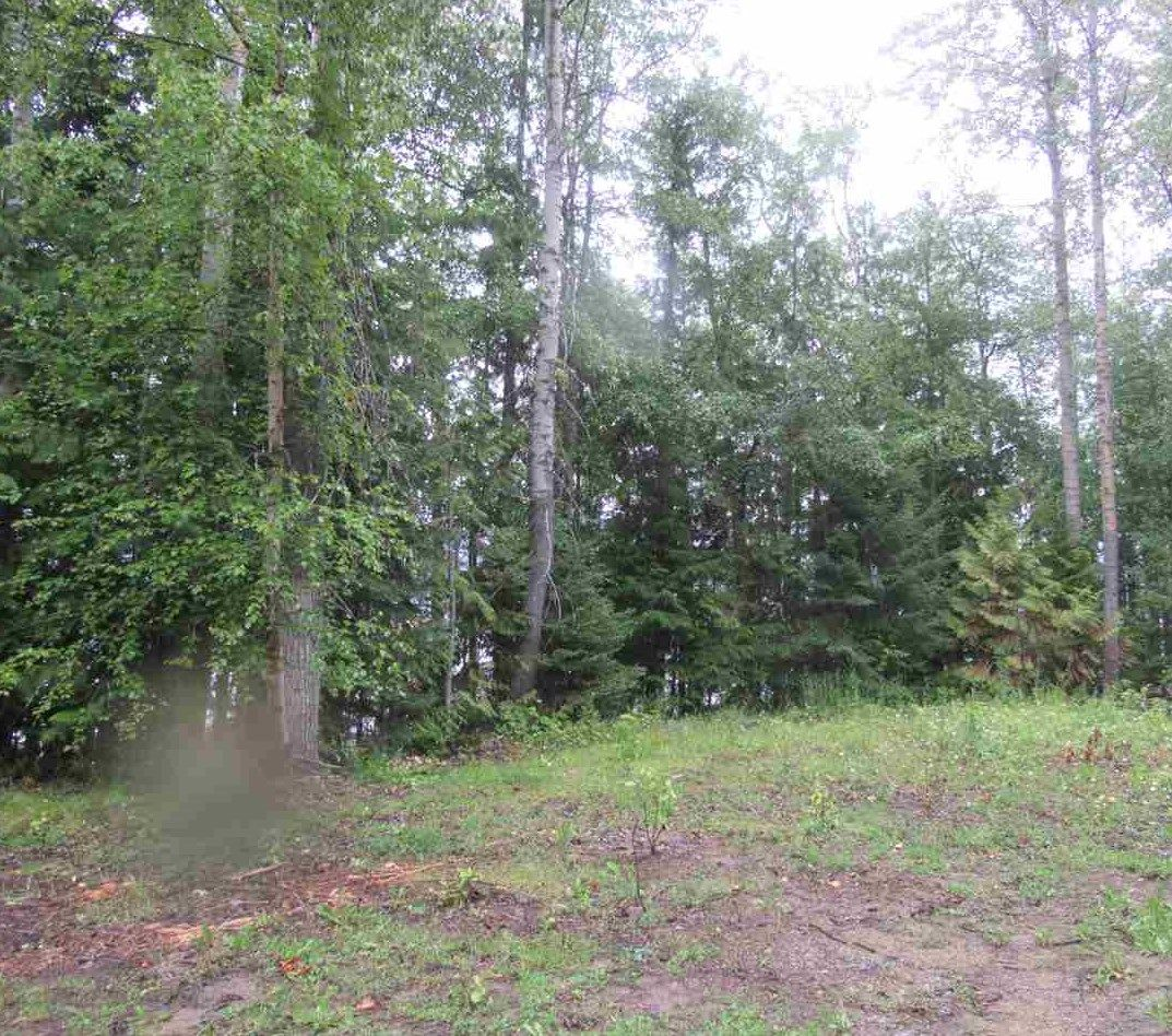 """Photo 19: Photos: LOT 3 HAGGENS POINT Road: Horsefly Land for sale in """"QUESNEL LAKE"""" (Williams Lake (Zone 27))  : MLS®# R2398733"""