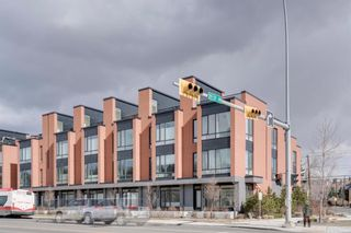 Photo 47: 3004 Parkdale Boulevard NW in Calgary: Parkdale Row/Townhouse for sale : MLS®# A1093150