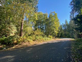 Photo 4: 4665 CRESCENT ROAD in Nelson: Vacant Land for sale : MLS®# 2461363