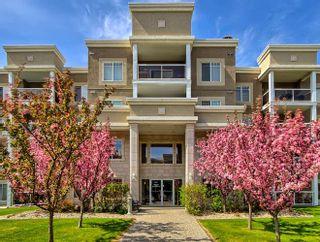 Photo 14: 245 78 B MCKENNEY Avenue: St. Albert Condo for sale : MLS®# E4234902