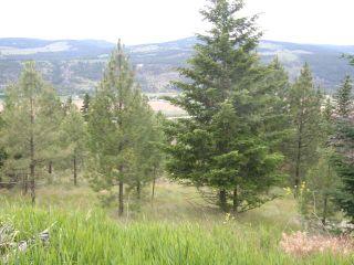 Photo 8: 6520 OLD HIGHWAY 5 in : Heffley Lots/Acreage for sale (Kamloops)  : MLS®# 135004