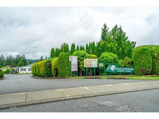 """Main Photo: 46 2035 MARTENS Street in Abbotsford: Abbotsford West Manufactured Home for sale in """"Maplewood Estates"""" : MLS®# R2592215"""