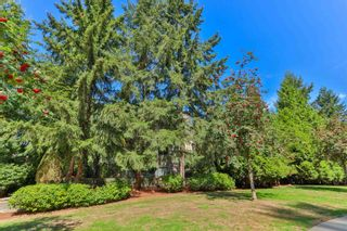 """Photo 15: 112a 2615 JANE Street in Port Coquitlam: Central Pt Coquitlam Condo for sale in """"BURLEIGH GREEN"""" : MLS®# R2617677"""