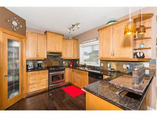 Photo 15: 241 Springmere Way: Chestermere House for sale : MLS®# C4005617