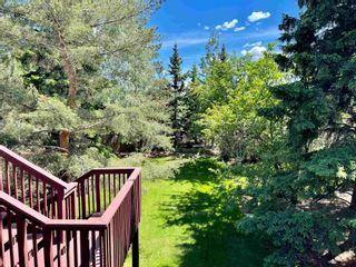 Photo 42: 12433 28 Avenue in Edmonton: Zone 16 House for sale : MLS®# E4245223