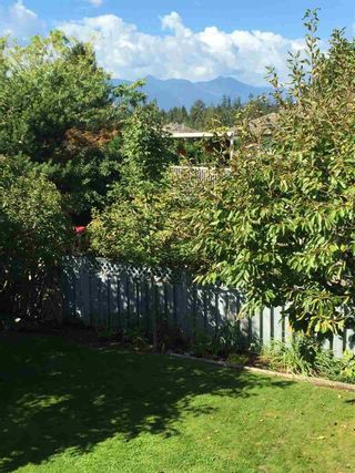 Photo 20: 23189 124A Avenue in Maple Ridge: East Central House for sale : MLS®# R2107120