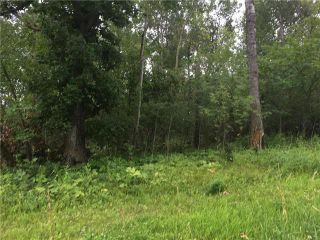 Photo 2: 7 Snow Goose Drive: Lake Manitoba Narrows Residential for sale (R19)  : MLS®# 202101511