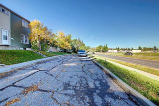 Photo 31: #307    405 64 Avenue NE in Calgary: Thorncliffe Row/Townhouse for sale : MLS®# A1146398