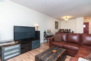 Photo 5: 104 3258 Alder St in VICTORIA: SE Quadra Condo for sale (Saanich East)  : MLS®# 774712