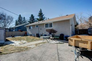 Photo 14: 9012 Fairmount Drive SE in Calgary: Acadia Detached for sale : MLS®# A1082109